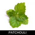 PATCHOULI.png