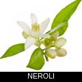 NEROLI.png
