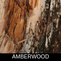 AMBERWOOD.png