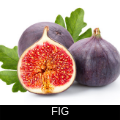 FIG.png