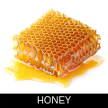 HONEY.png