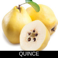 QUINCE.png