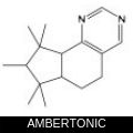 AMBERTONIC.png
