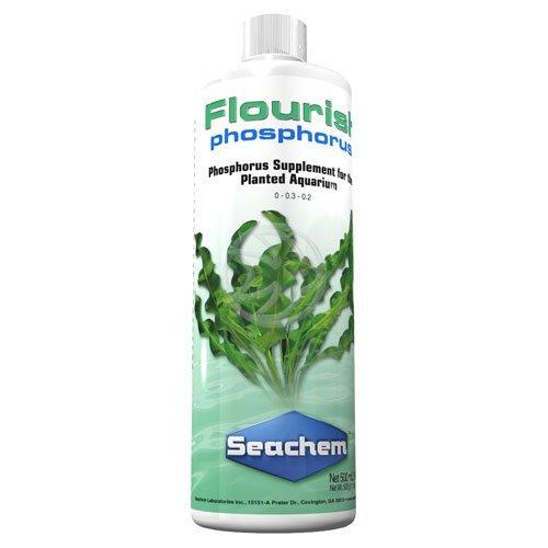 flourish_phosphorous.jpg