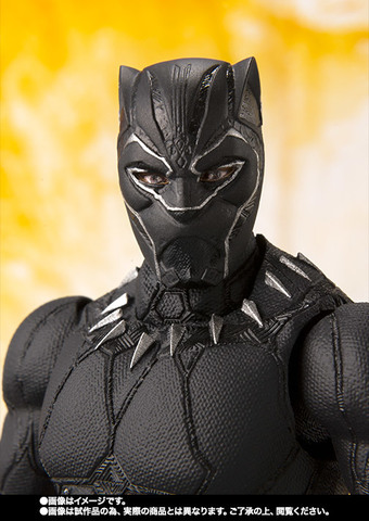 SHF_BlackPanther_IW 005.jpg