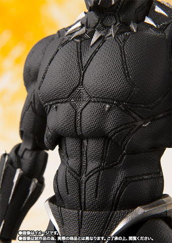 SHF_BlackPanther_IW 006.jpg