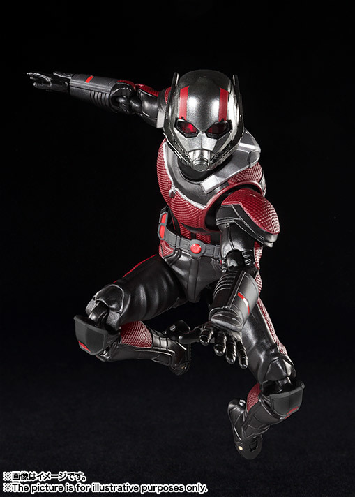 SHF_Antman_Movie2018 003.jpg