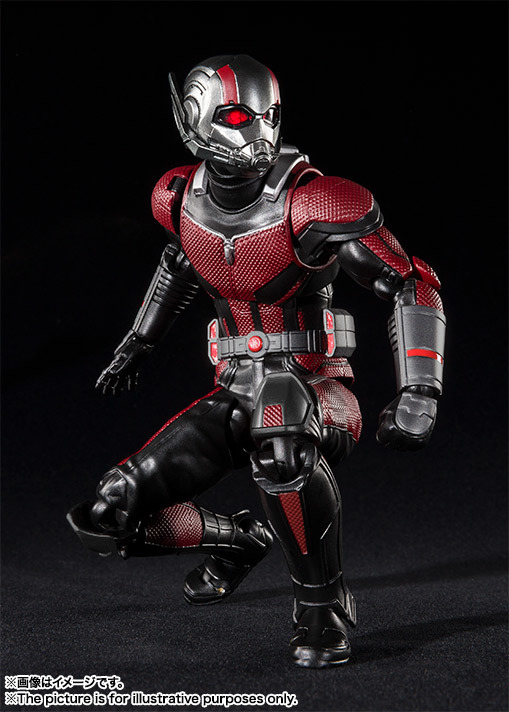 SHF_Antman_Movie2018 004.jpg