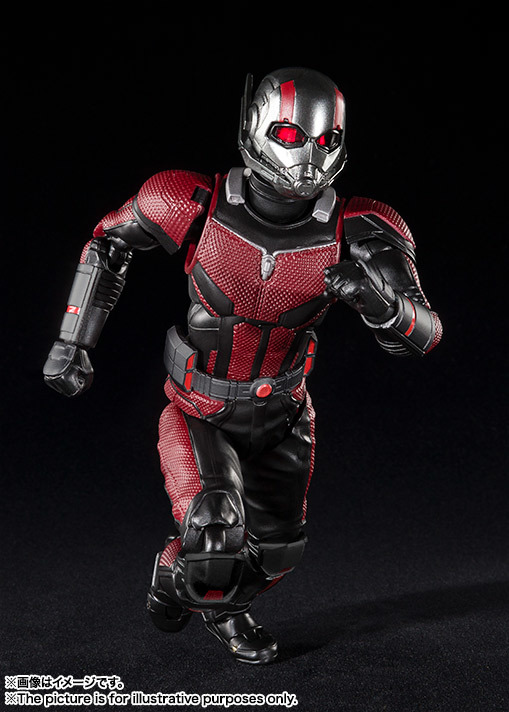 SHF_Antman_Movie2018 005.jpg
