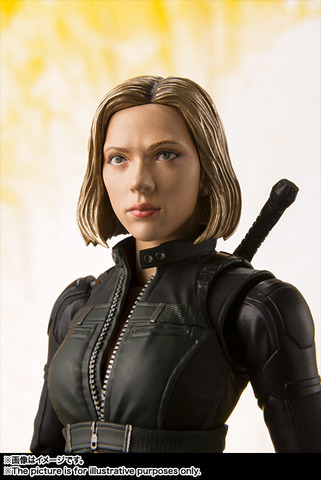 SHF_BlackWidow_IW 004.jpg