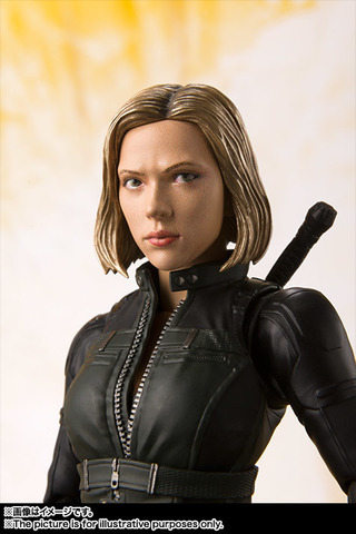 SHF_BlackWidow_IW 005.jpg