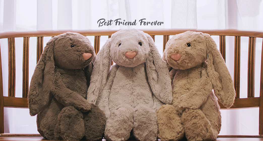 Abbie & Friends | Featured Collections - GIFTS
