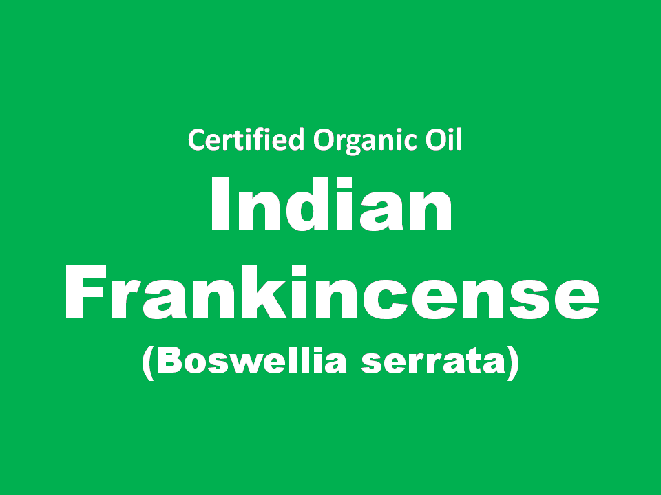 indian frankincense.png