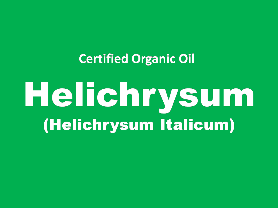 helichrysum.png