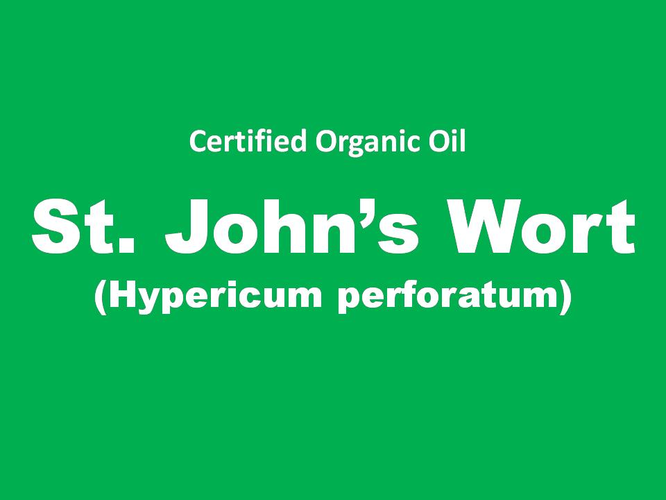 st. john's wort.PNG