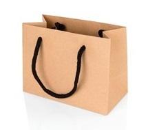 Kraft Rope Handle Paper Bag Small Jpg