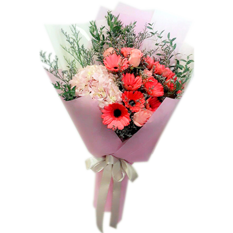 Red african daisy.png