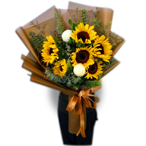 6 sunflower.png