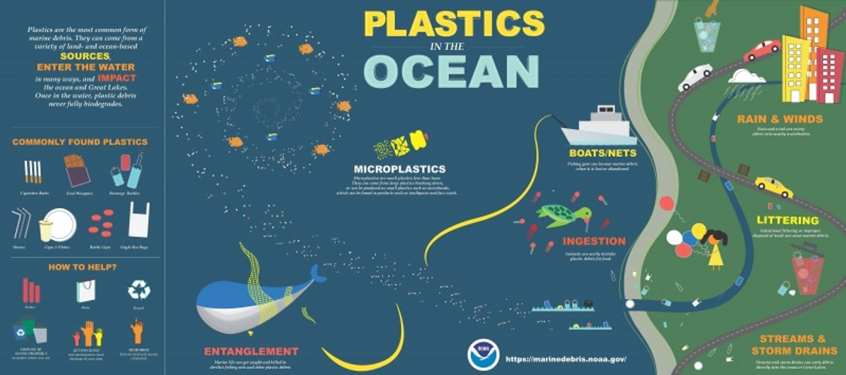 The Impacts of Plastic