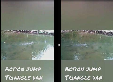 INDO MALAYSIA 100% PURE HANDMADE TOPWATER WOODEN JUMP FROG LURE  HAMMERHEAD DF.JPG
