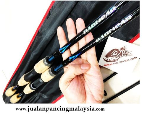PAONEAR CONQUEST   SPINNING BAITCASTING ROD.JPG