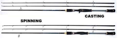 Asian Long Shot Rod1.jpg