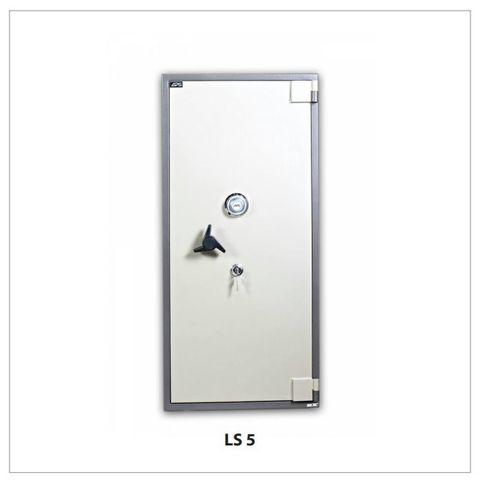 LS5-1.jpg