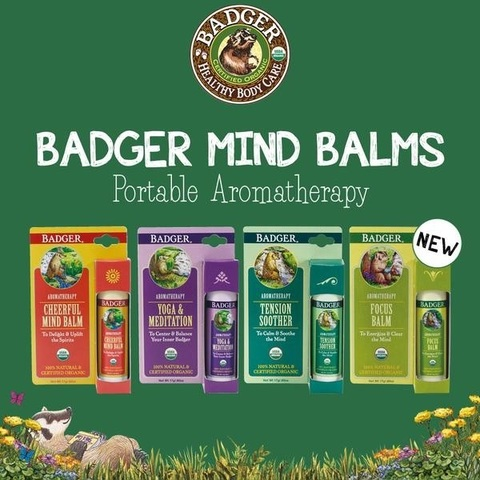badger-focus-balm-aromatherapy-stick.jpg