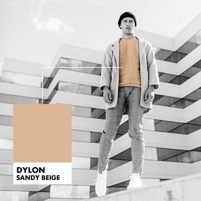 Dylon Official Website |  - PROMOTION