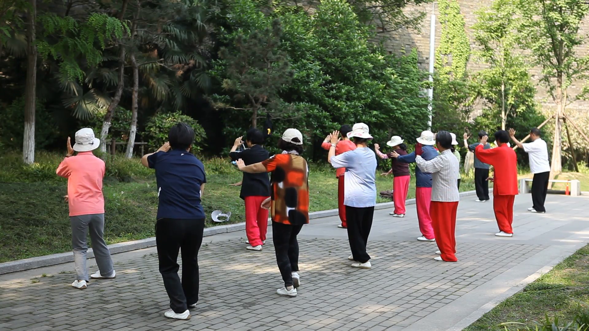 taiji-fitness-daily-chinese-tai-chi-exercise-nanjing-park-senior-people-practice-editorial-footage-news-documentary_4pu9pyzsg__F0000.png