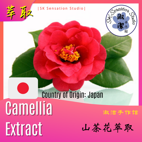 Camellia extract.png