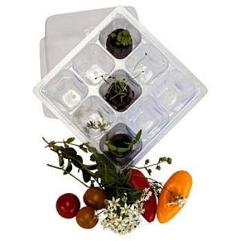HG45 Salad Garden Kit P.O. 2.jpg