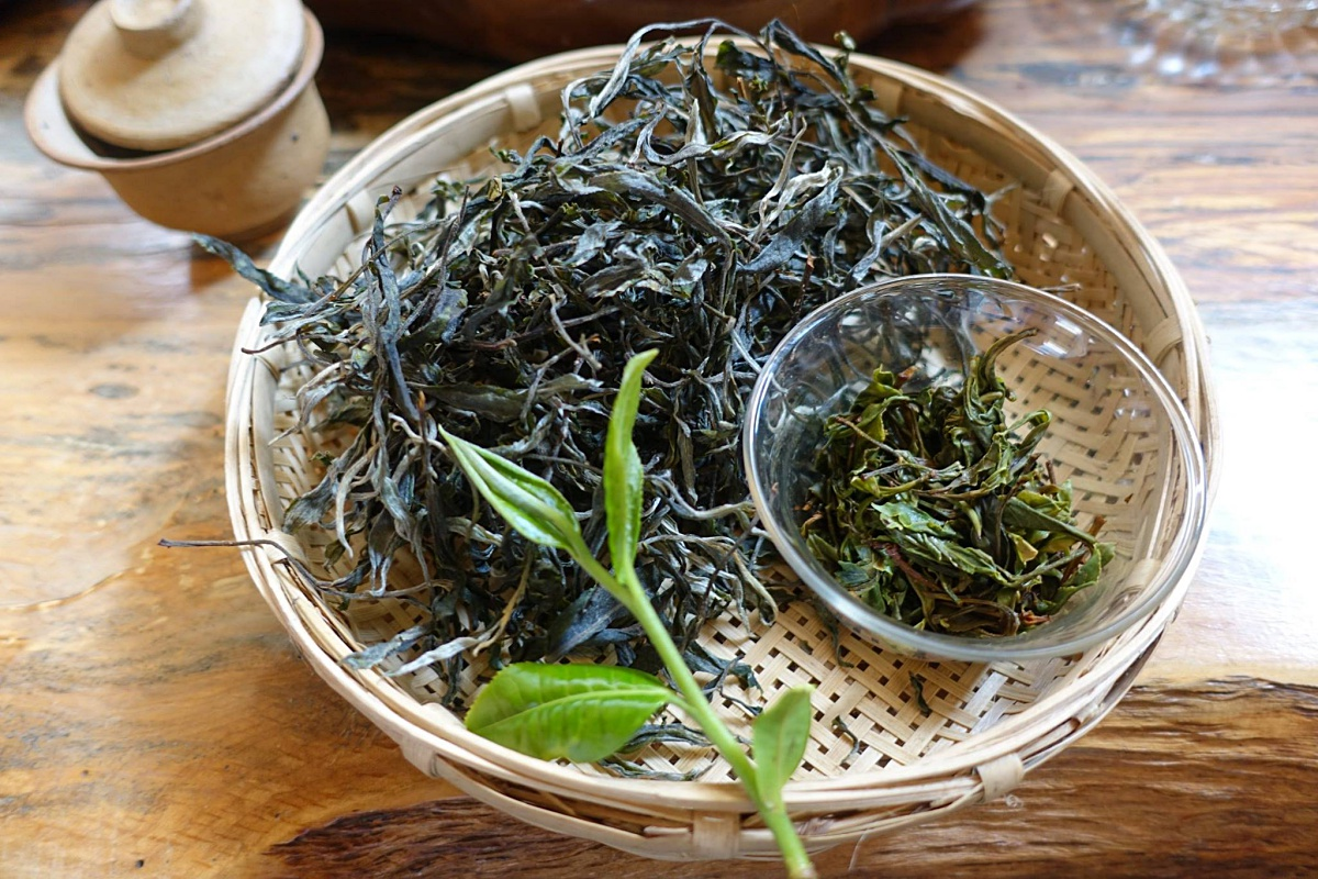 莫莫吾茗︱品生活也品時尚 | 品茶品健康