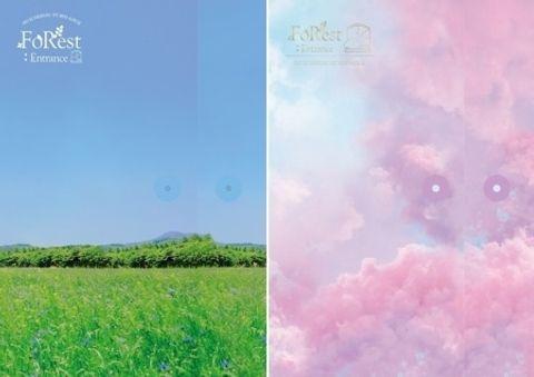 C4523a SEO EUNKWANG - Mini Album Vol.1 [FoRest - Entrance].jpeg