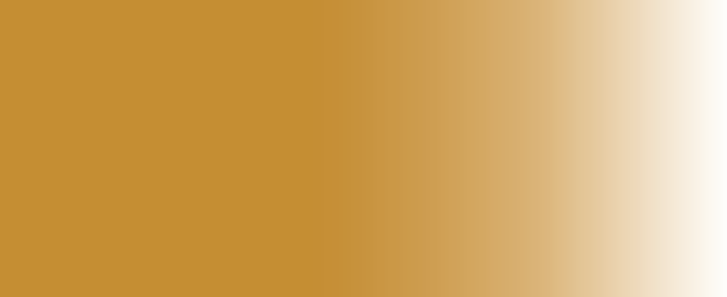 RAW UMBER.png