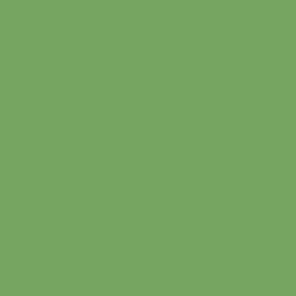 G189 DEEP OLIVE GREEN.jpg