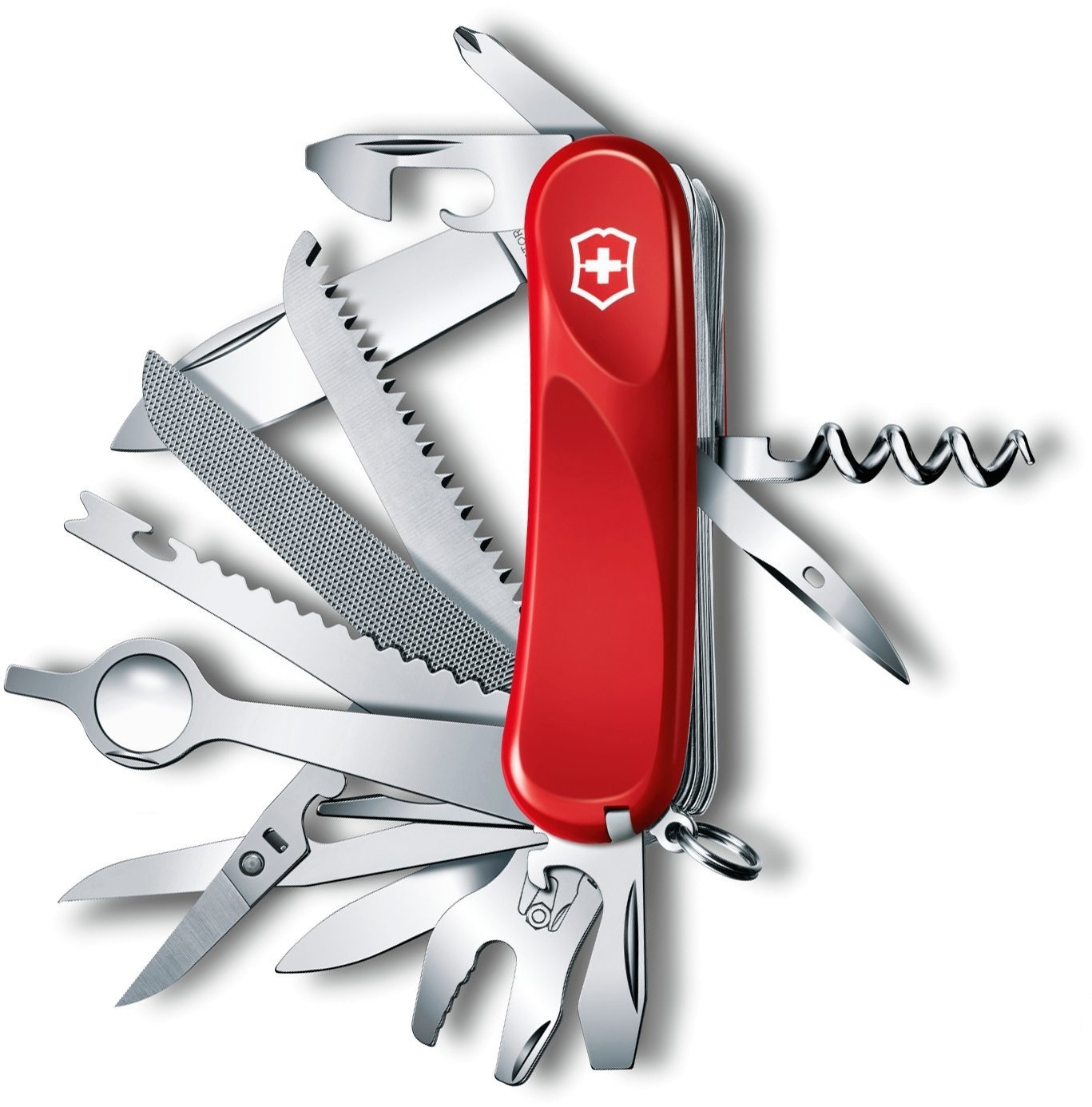 victorinox_delmont_collection_evolution_28_2.5383.e_2.jpg