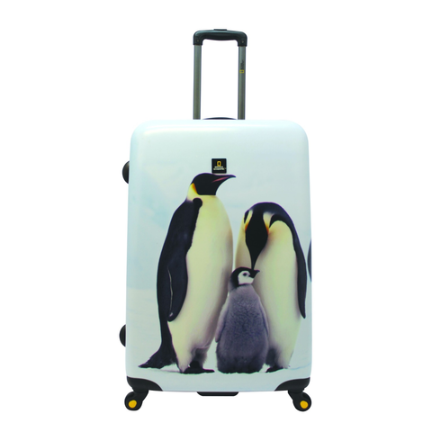 Penguin-large-icon.png