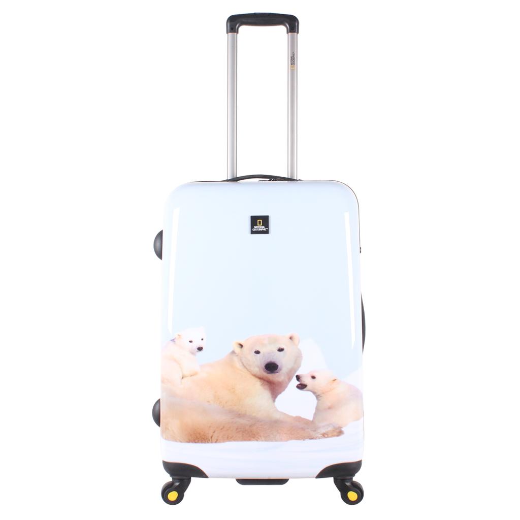 Polar-Bear-Medium-icon.png