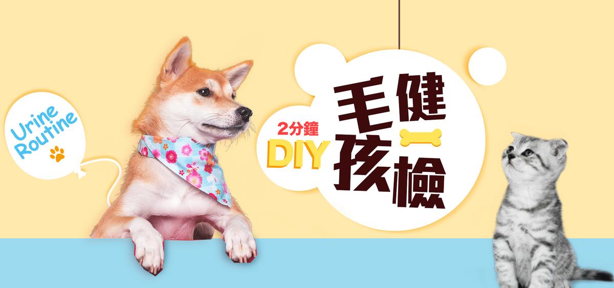 【毛孩尿液檢測試紙】在家DIY快速篩檢10種寵物常見疾病因子