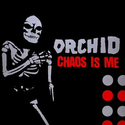 ORCHID-CHAOS.jpg