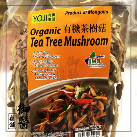 Tea Tree Mushroom 1.png