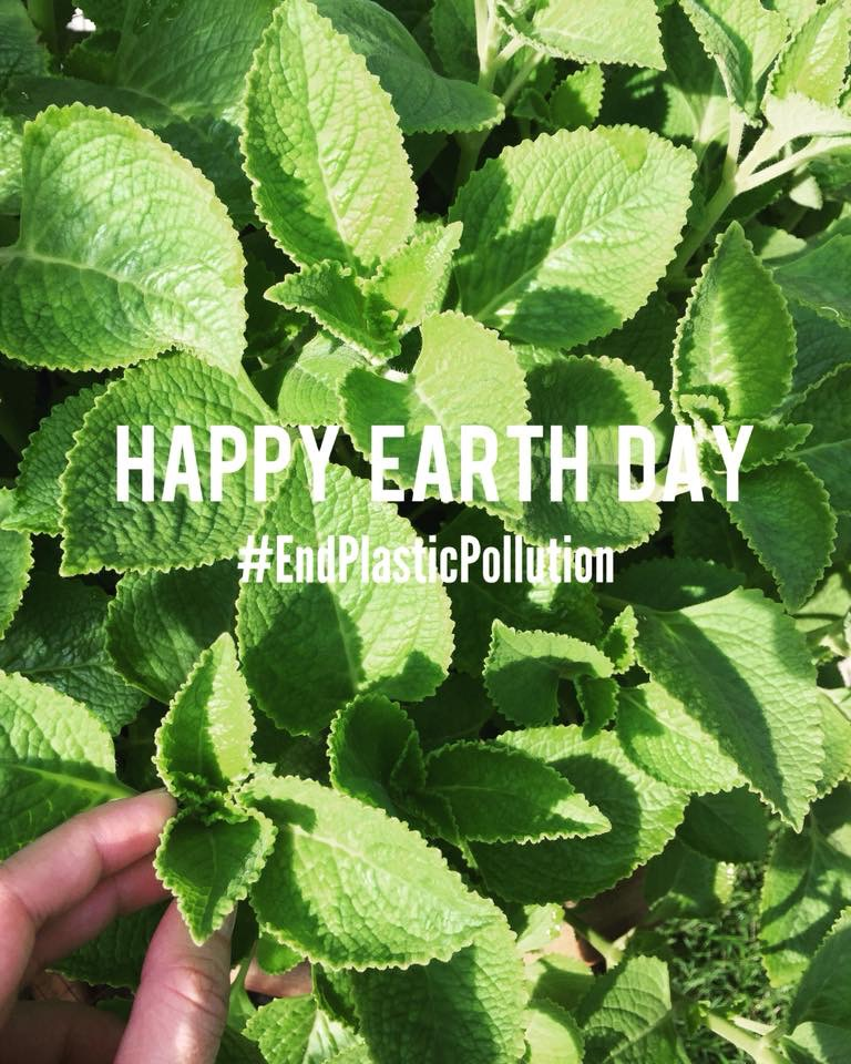 Earth Day Giveaway!