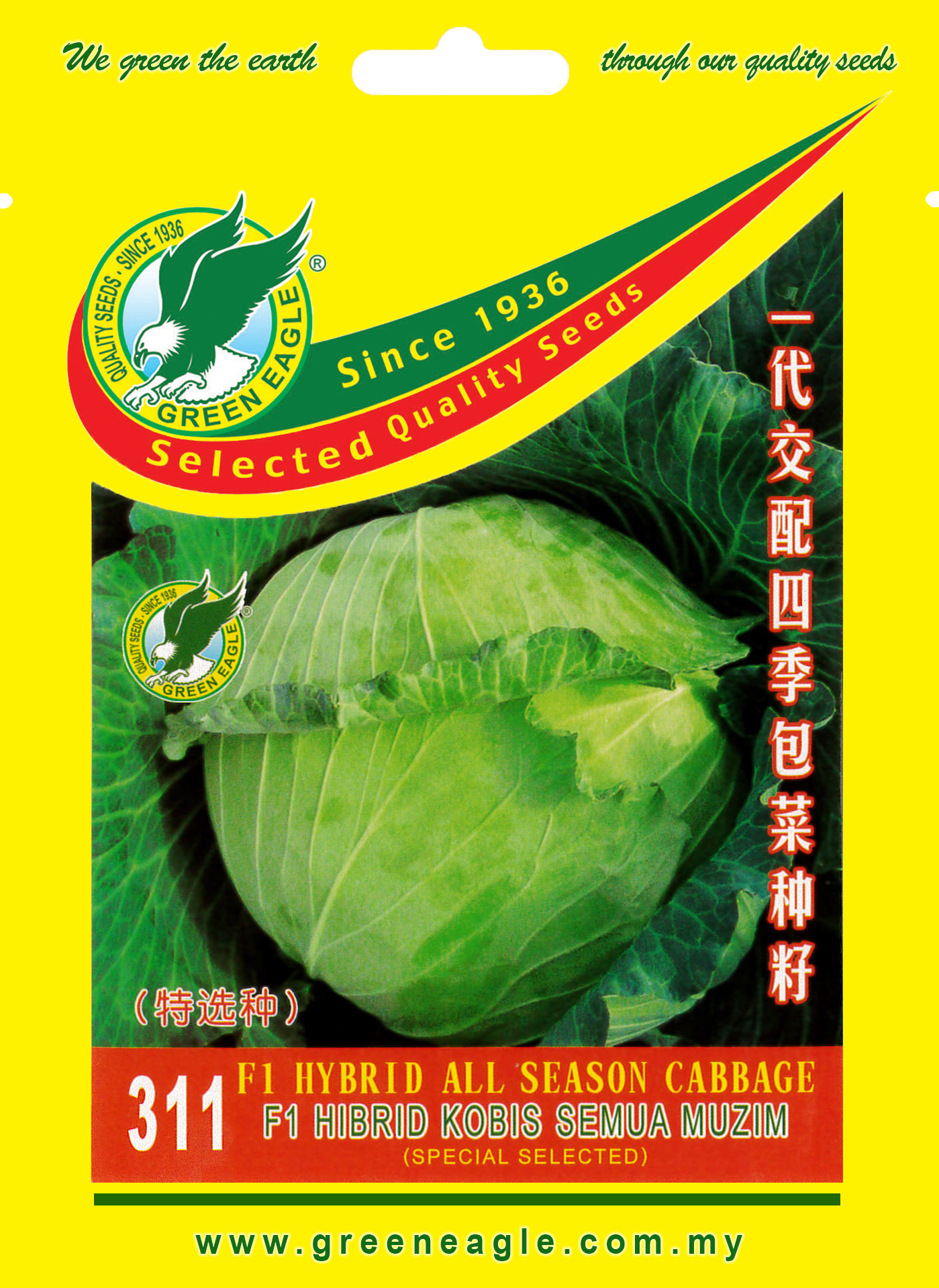 311-F1-Hybrid-All-Season-Cabbage-1.jpg