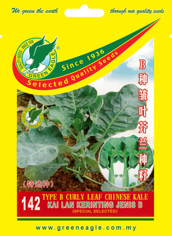 142-Type-B-Curly-Leaf-Chinese-Kale-1.jpg