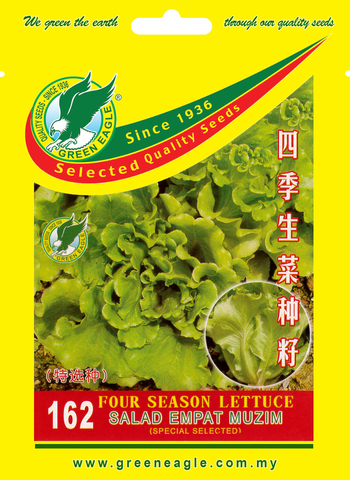 162-Four-Season-Lettuce.jpg