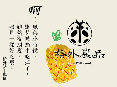 鳳梨標籤-r.jpg
