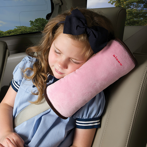 Seatbelt_Pillow__4fbe84b461709.png