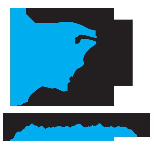 Darwish Rich Design®