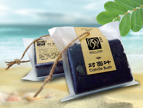 WILLOW Candlebush Soap -  Itchiness of Skin and Scalp, Eczema 柳树林对面叶皂- 皮肤瘙痒, 湿疹